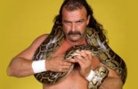 Update On Jake 'The Snake' Roberts' Condition And Why He Was Put On A Ventilator